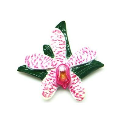 Flower Polyresin Magnet -   Arachnostylis Chorchalood